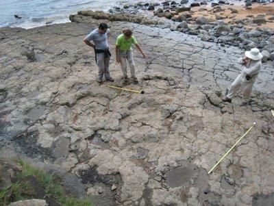 Huellas de Dinosaurios en Asturias