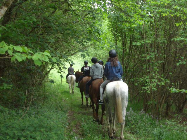 paseos a caballo en Asturias