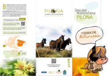 Casas Rurales en Asturias, Piloña